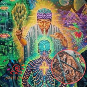 Retiro de plantas sagradas